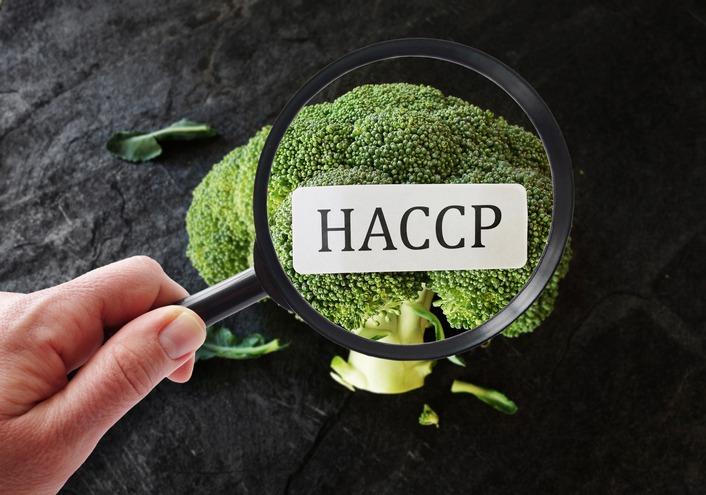 7 fasi autocontrollo HACCP